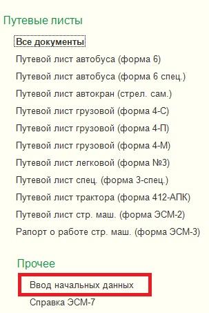 документ ввод начальных данных